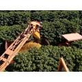 Свежеобжаренный кофе BRAZIL AURA MATINA LOT#B66